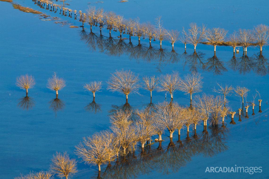 Flooded fields. Arcadia, Peloponesse, Greece