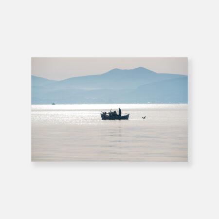 Η παρέα του ψαρά - © Θεόδωρος Παπαγεωργίου